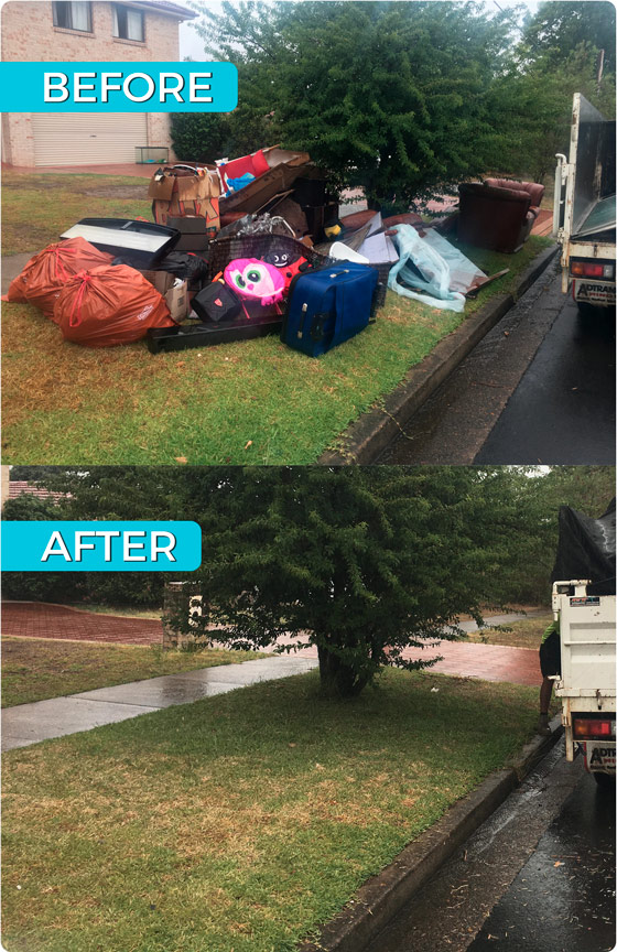 Before and After Waste Removal
